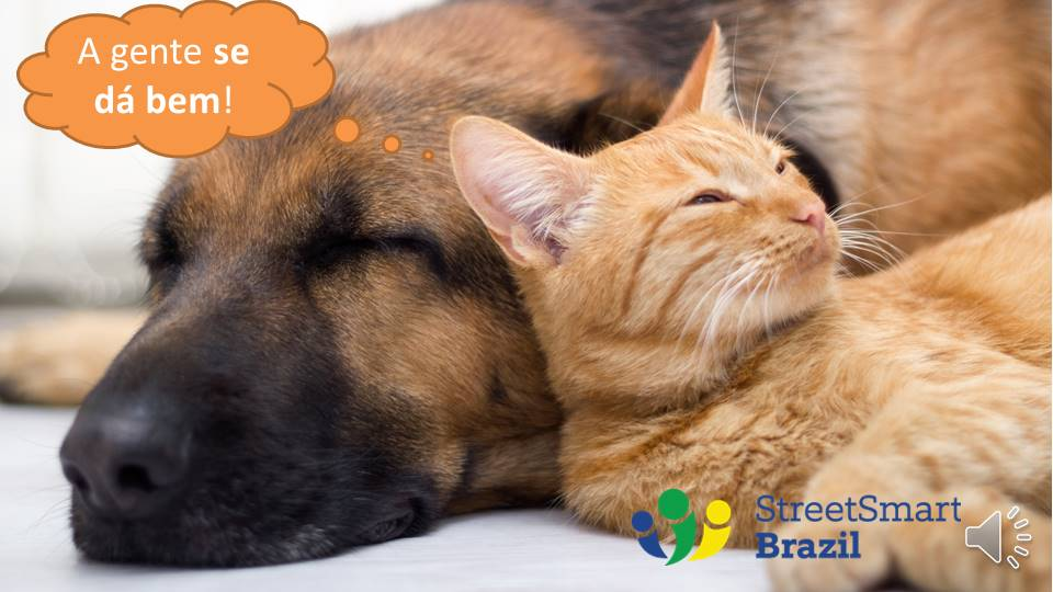 Dar-se bem: To get along well & To do well - Portuguese lesson