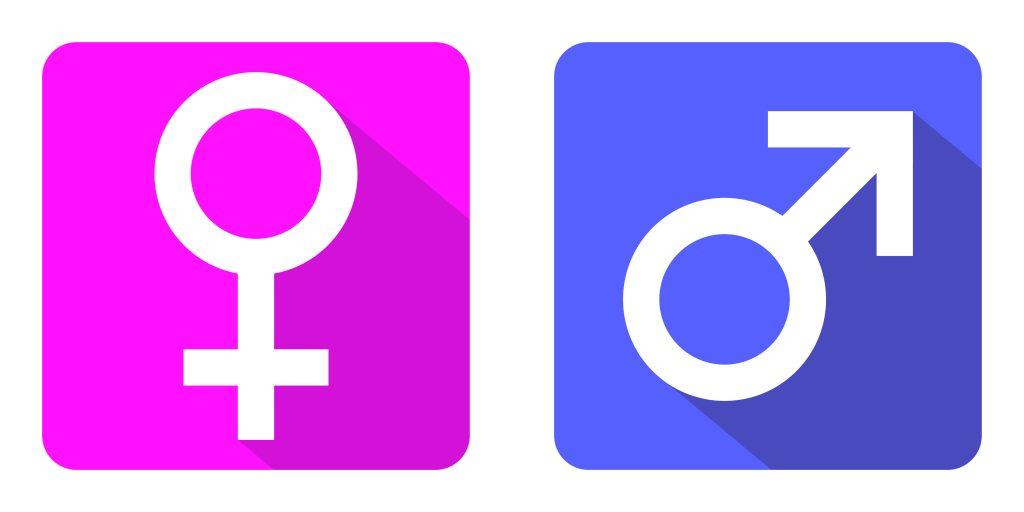 Gender of Nouns in Portuguese