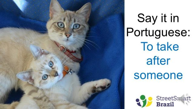 Portuguese lesson - How to say in Portuguese - To take after someone