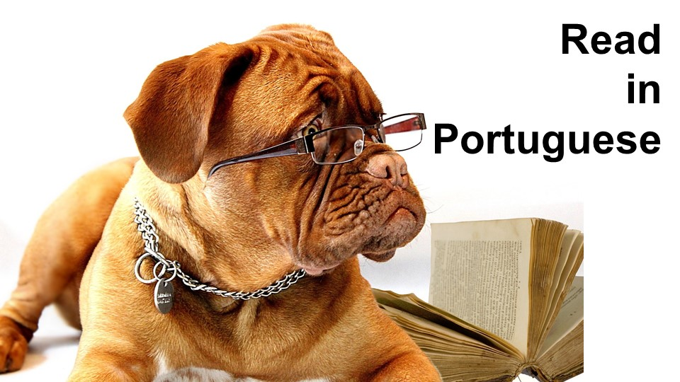 read in portuguese, book in portuguese, learn verb conjugation, portuguese lesson